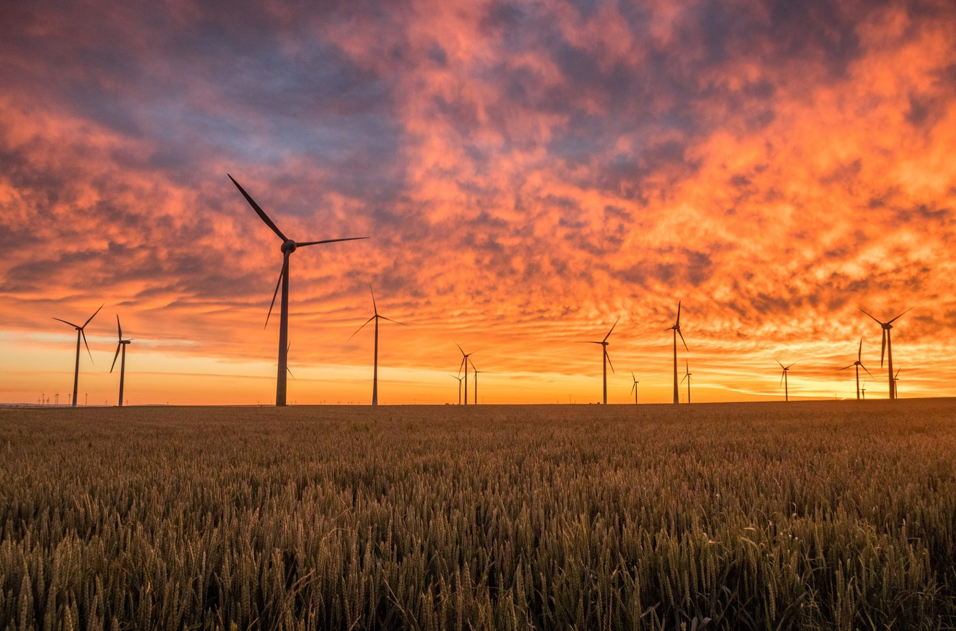 5 inšpirácií, ako šetria energiu podniky vo svete